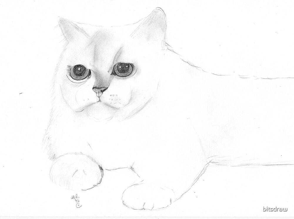 White cat by bitsdraw