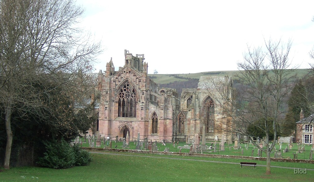Melrose Abbey by blod