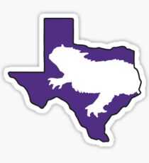 TCU Fort Worth Texas Sticker