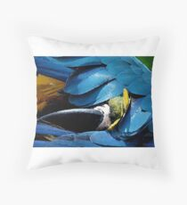 Grooming Parrot Throw Pillow
