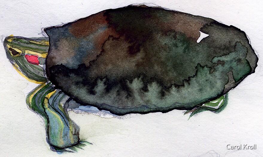Turtle by Carol Kroll