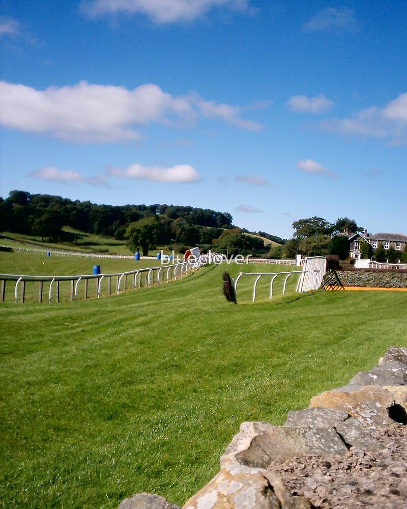 The Cartmel Racecourse by blueclover