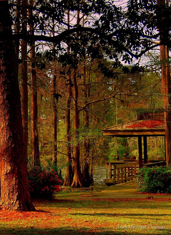 Cedar Park Sunset by Tom Michael Thomas