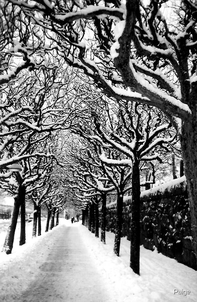 Winter Wonderland by Paige