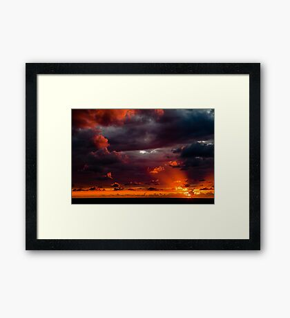 nature's own ART Framed Print
