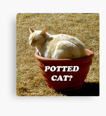 Potted Cat? Canvas Print