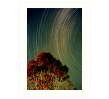 Eildon Trails Art Print