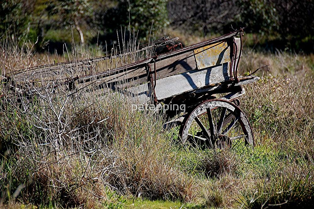 Abandon Wagon by patapping