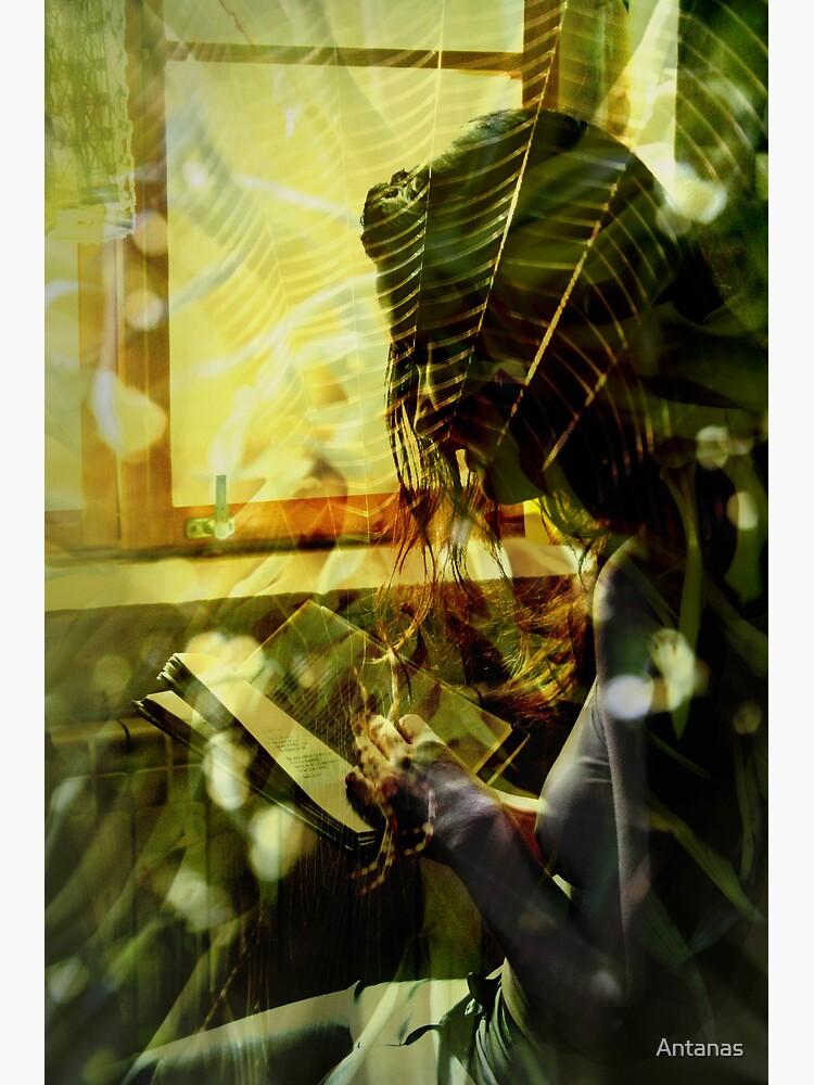 Light... by Antanas