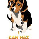 I Can Haz Puppy? by Jemina Venter