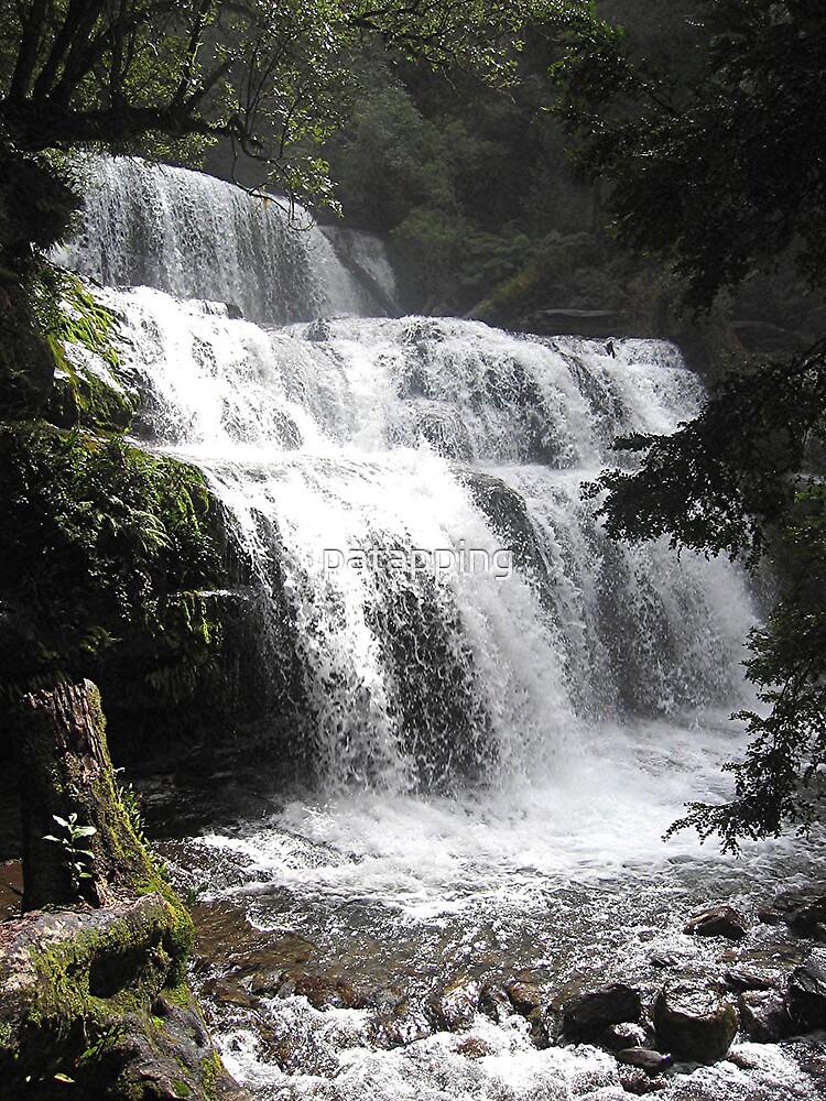 Liffey Falls Tasmania by patapping