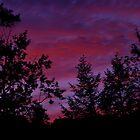 Phoenicia Sky 3 by Colin Walker