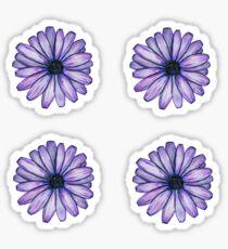 purple daisy sticker 4 pack Sticker