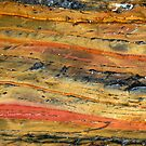 Colours of Australia 2 by Trish Meyer