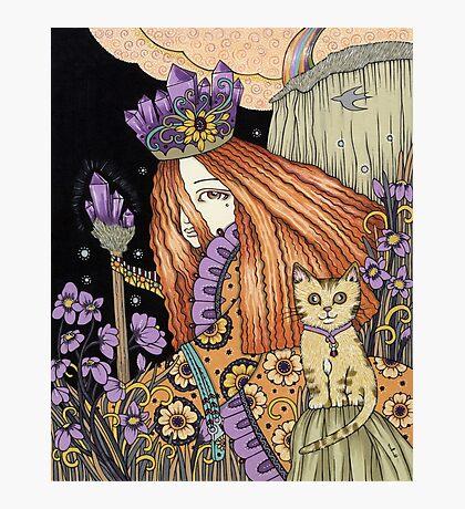 Amethyst & Violet Photographic Print