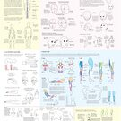 Guide to Drawing the Body by Joumana Medlej