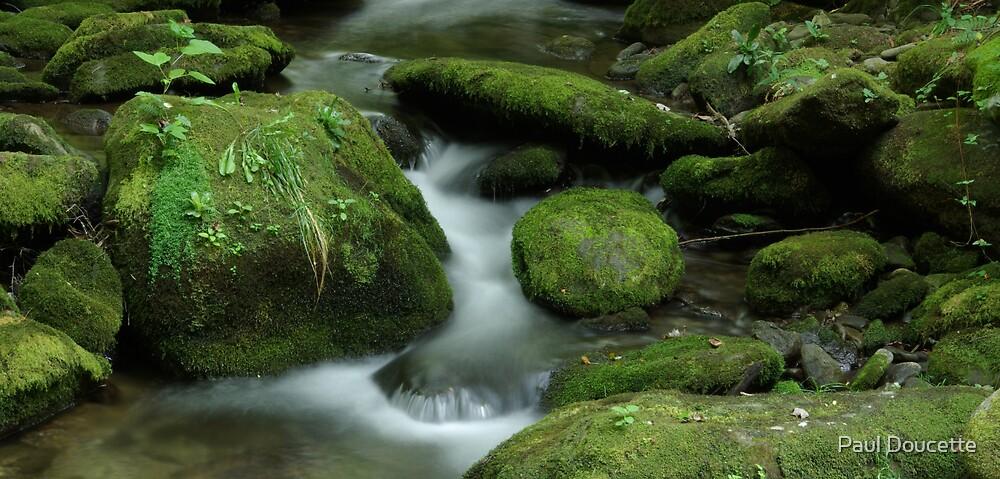 Flowing 3 by Paul Doucette