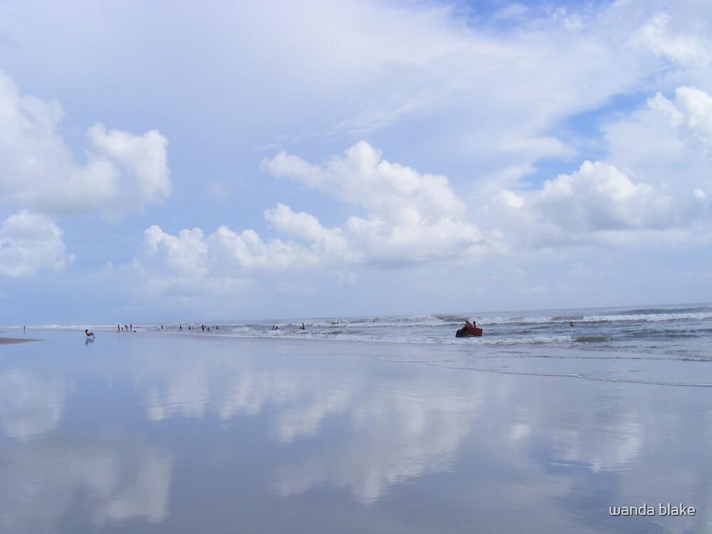 beach by wanda blake