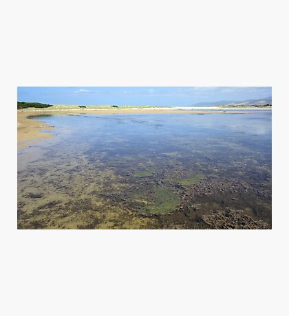 Wetland Waters Photographic Print