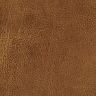 Brown Leather by Looly Elzayat