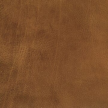 Brown Leather by pharostores