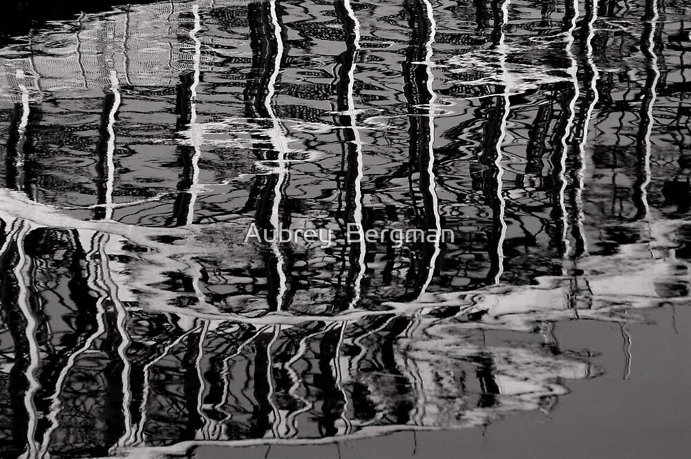 Destortion by water by Aubrey  Bergman