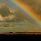 Rainbow by Dan Coates