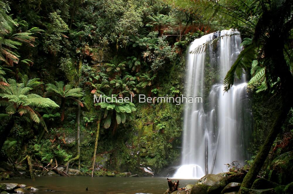 Beauchamp Falls 4 by Michael  Bermingham