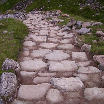 The Path on Ben Nevis by noohoo