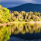 Spring on the water - Eildon by Norman Repacholi