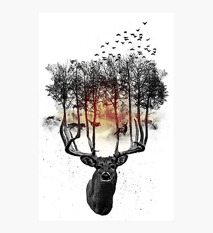 Ashes to ashes. Photographic Print