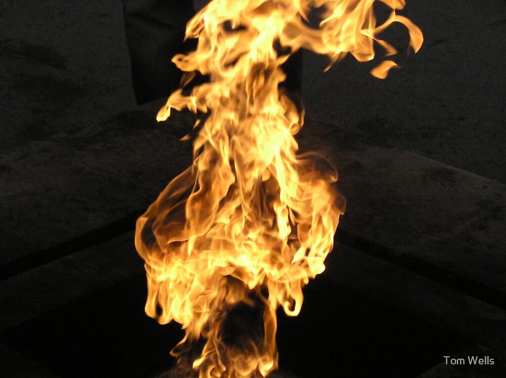 St Petersburg Flame by Tom Wells