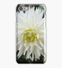LARGE WHITE PLEASURE iPhone Case/Skin