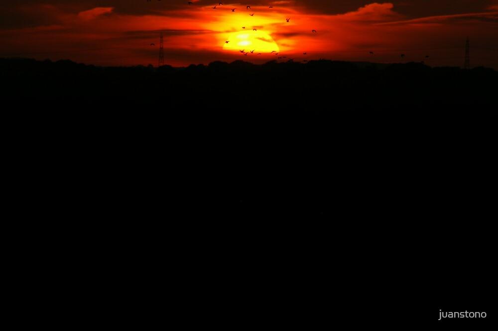 Across The Sun by juanstono