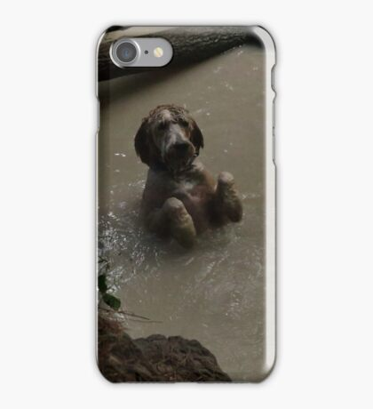 Labradoodle Wants the Ball iPhone Case/Skin