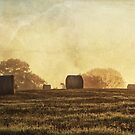 Textured haybales by Stuart  Gennery