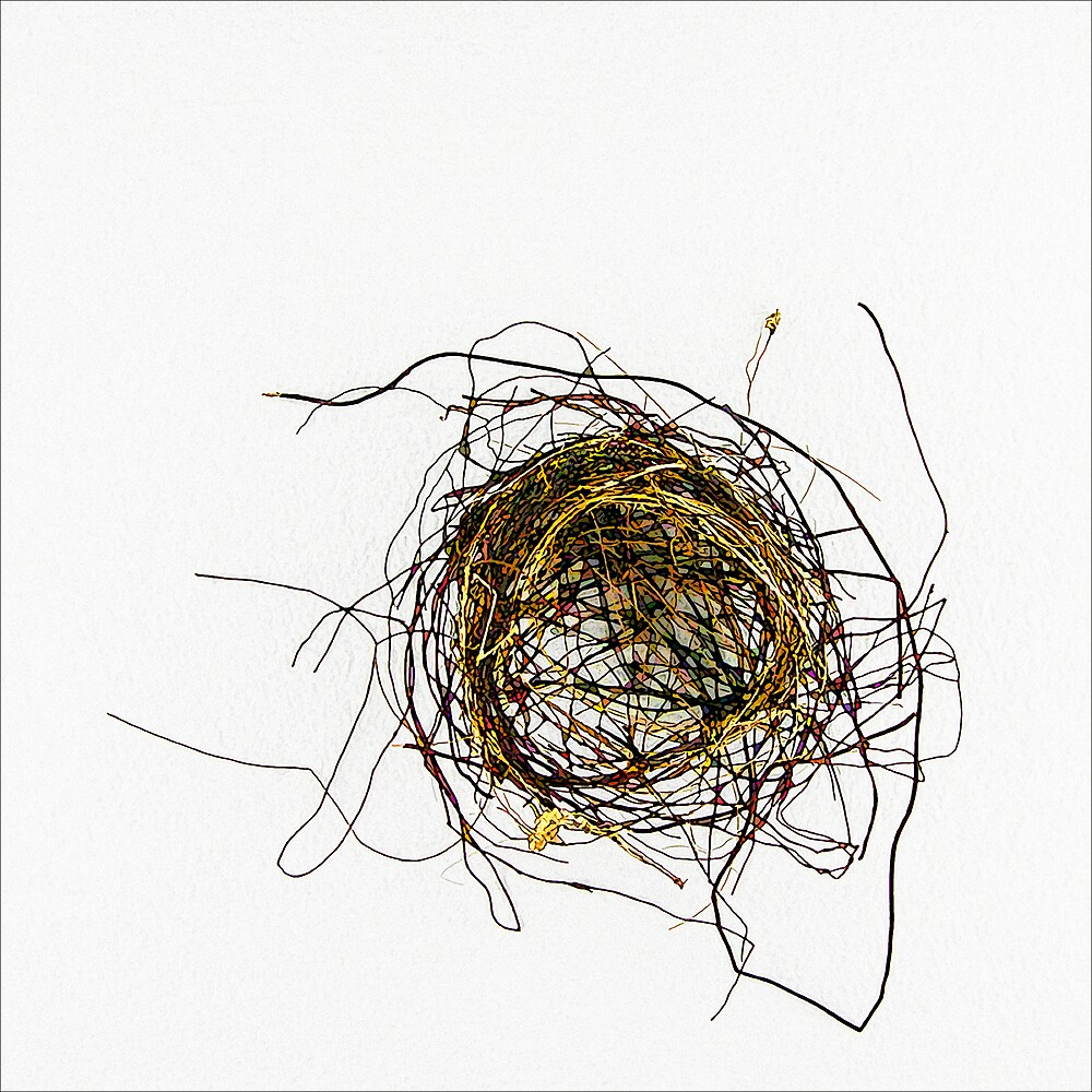 Nest by DigitalMuse