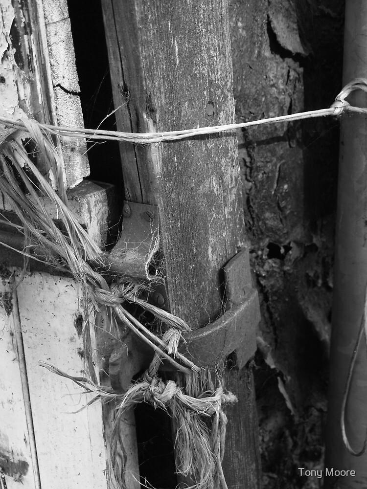 Who Needs Locks by Tony Moore