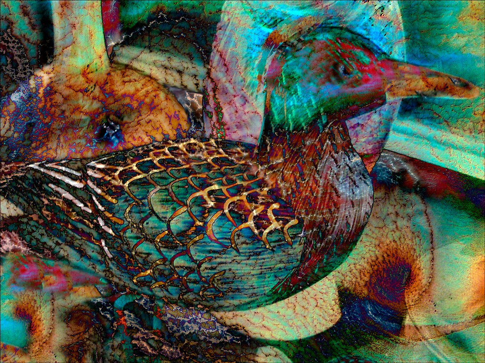 Still Life With Duck by DigitalMuse