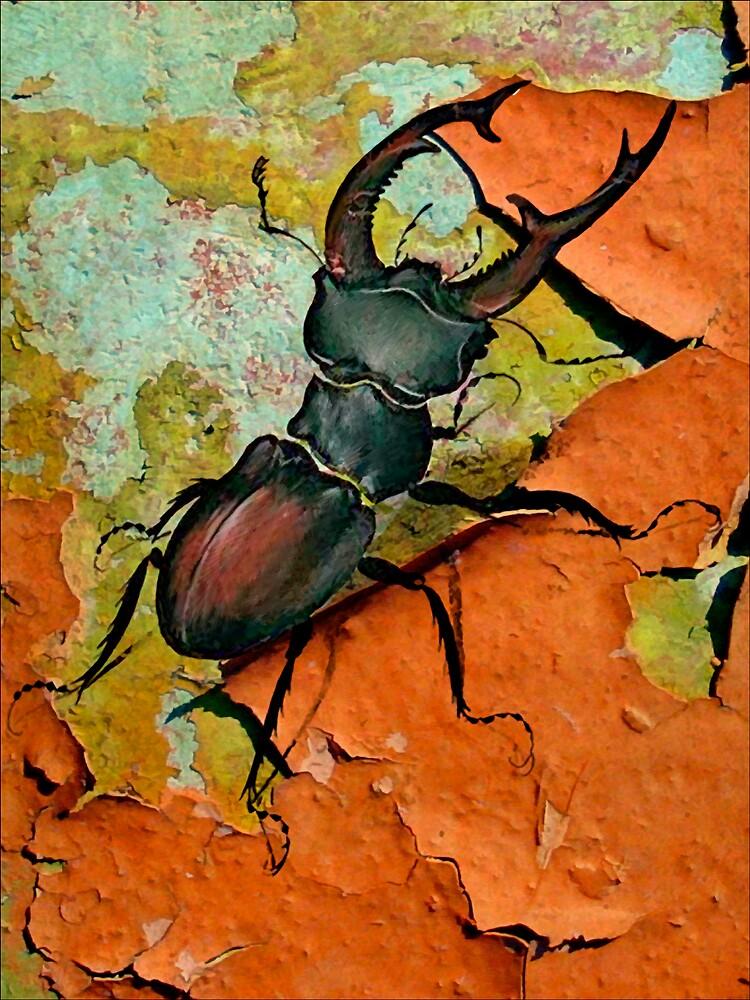 Beetle by DigitalMuse