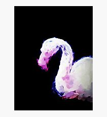 Head of a Little Pink Flamingo Photographic Print