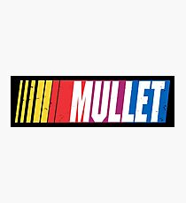 Mullet Photographic Print