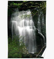 Meigs Falls II  Poster