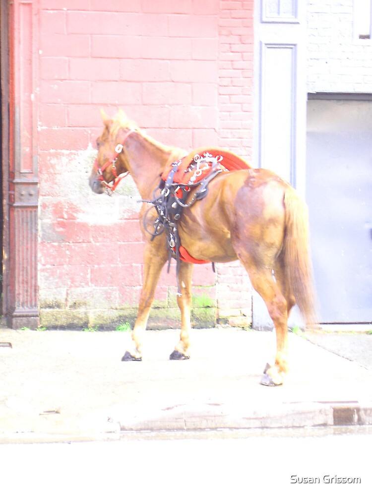 City Horse by Susan Grissom
