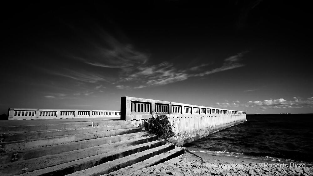 The Pier by Roberts Birze