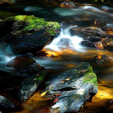 moss rocks by mrmatt43