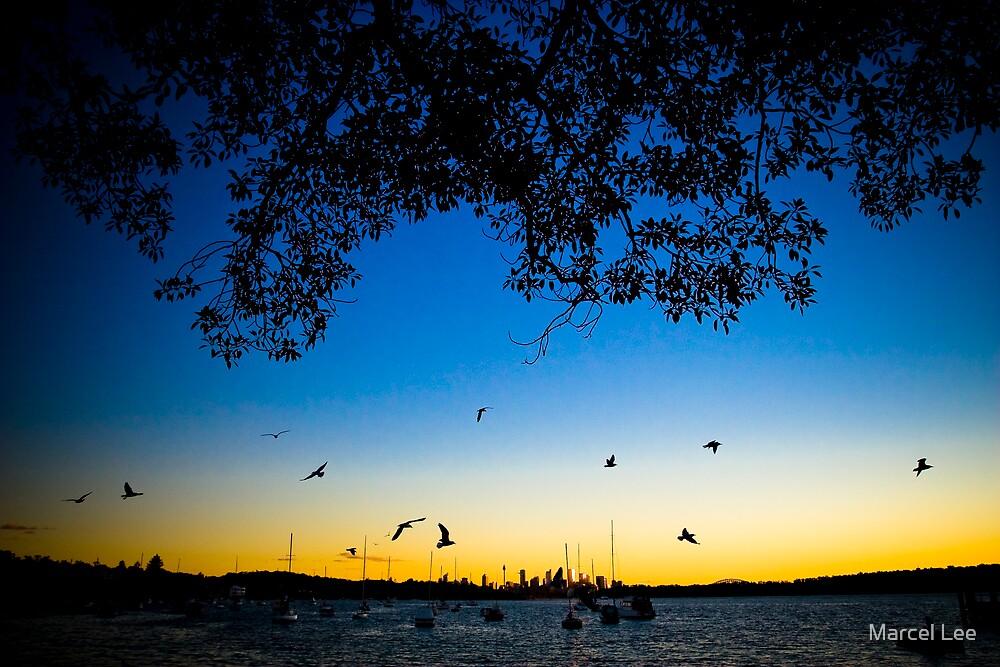 Watson's Bay by Marcel Lee