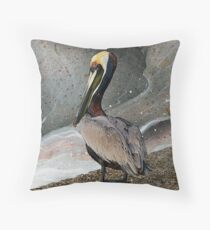 Pelecanus Occidentalis 3 Throw Pillow