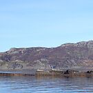 Wreck in  Lochalsh by Poetpaul