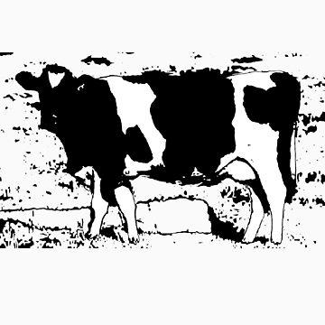 digital dairy by zarathustra